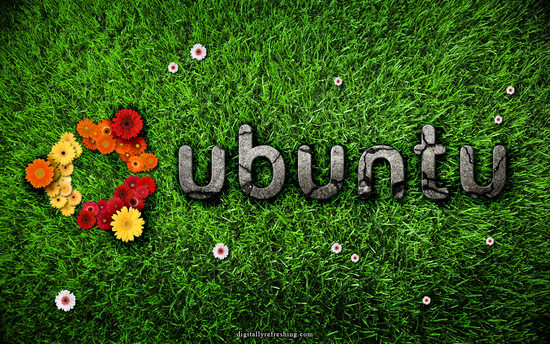 Size 550x415 ubuntu desktop nature