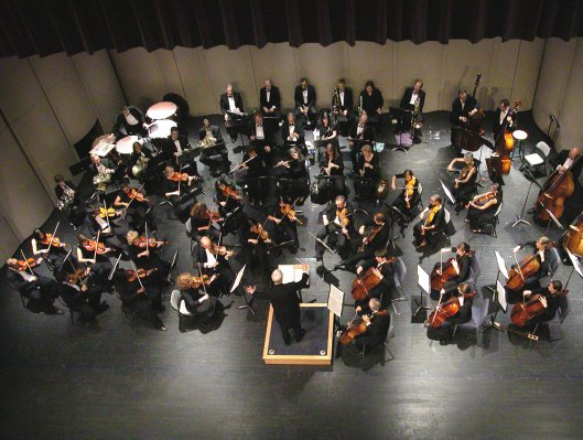 Size 550x415 orchestra%20picture