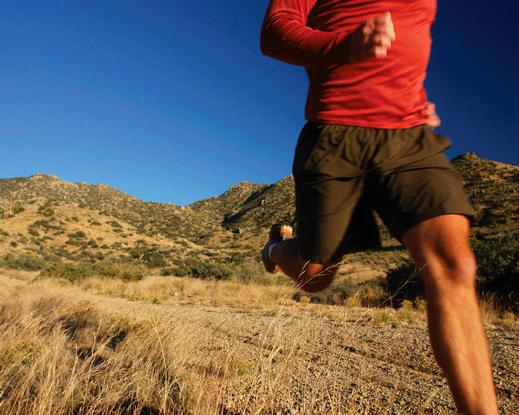 Size 550x415 wilderness running