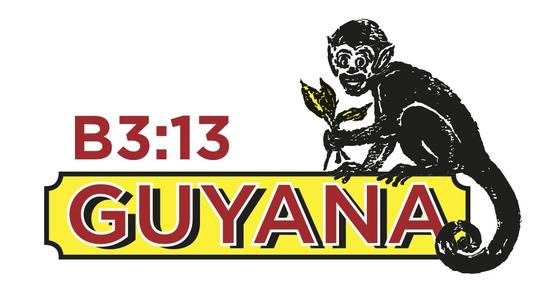 Size 550x415 guyana logo