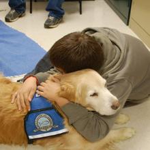 LCC K-9 Comfort Dogs Travel Expenses