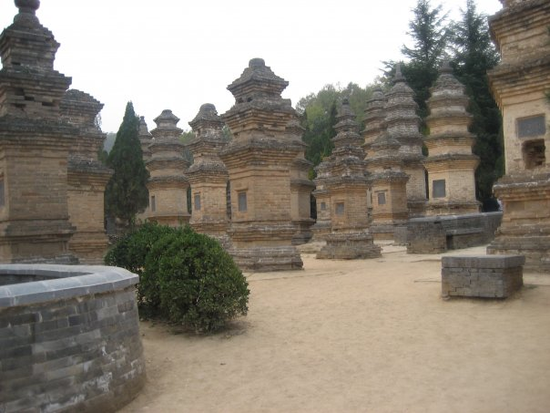 Size 550x415 shaolin%20temple%20pagoda%20forest