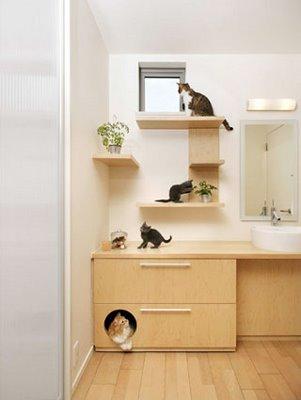 Size 550x415 cat21 1