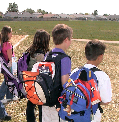 Size 550x415 backpack program