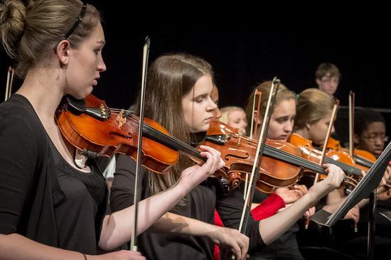 Size 550x415 violins