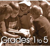 Size 550x415 grades new2