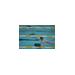 elizabeth fabel fundraising for Piranhas Swim-a-rama 2013