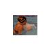Anna middleton fundraising for Piranhas Swim-a-rama 2013