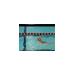 Britta Lundgren Swim-A-Thon