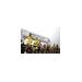 AACI's Shira Pransky Project in the Jerusalem Marathon