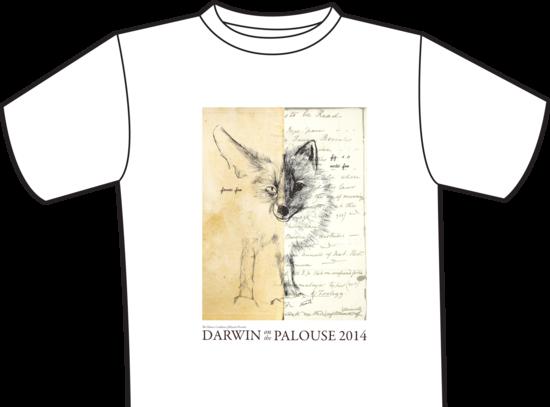 Size 550x415 dotp2014 t shirt short