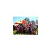 2014 CAPCoasters Ragnar Relay Team-Sue Crockett