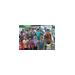 Kripa Cherian for 2014 Walk for Economic Empowerment - Team India