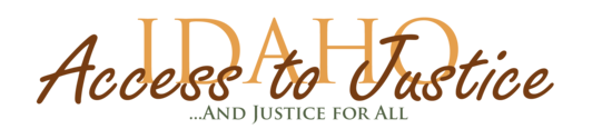 Size 550x415 iaj logo