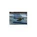 Samantha Watson CGBD Swim-A-Thon 2014 !!