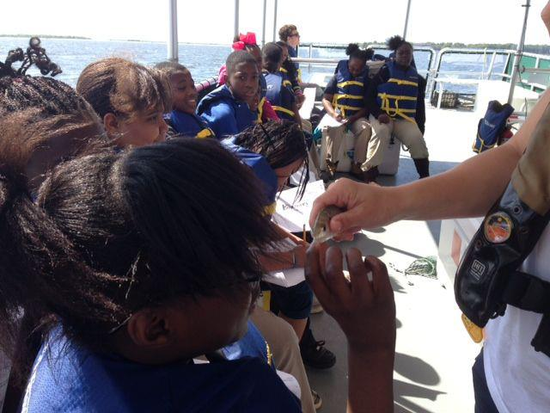 Size 550x415 5th graders traveled to the dnr on james island to learn about the estuary ecosystem right here in charleston