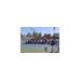 Phoenix Wheelchair Tennis Program