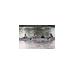 LOCR Ergathon Rowing Fundraiser