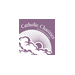 CATHOLIC CHARITIES OF SOUTHERN NEVADA