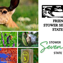 FRIENDS OF STOWER SEVEN LAKES STATE TRAIL INC