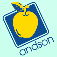 ANDSON INC