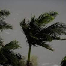 Emergency Response: Major Storm in Children's Future Village.