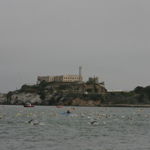Sharkfest Alcatraz Swim, August 8, 2015