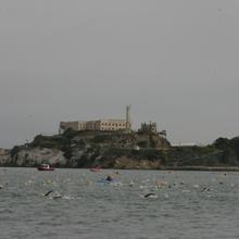 Sharkfest Alcatraz Swim, August 8, 2015