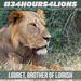 #34Hours4Lions (Ewaso Lions)