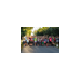 Regina Flocco fundraising for For Kids' Sake 5K Run/Walk-a-Thon