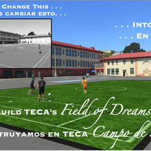 TECA Panthers – Help Us Build Our Field of Dreams