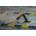 Karen Tabor fundraising for Stingray Aquatic Team Swim-A-thon