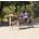 Jan Kahdeman:Horse Power 2016