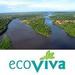Team EcoViva