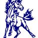 Sligo Stallion